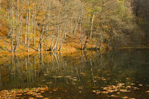Lake von Evren Kalinbacak
