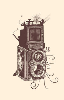 Retro Rolleiflex - Evolution of Photography - Vintage by Denis Marsili