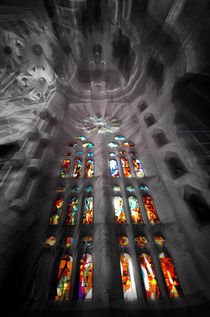 Inside Gaudi Cathedral  by JACINTO TEE