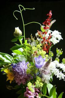 Wildflowers von Heidrun Lutz