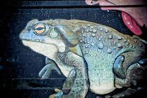 kiss the toad von Ralf Ketterlinus