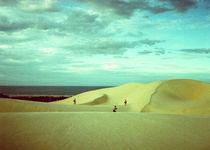 Dunasdorosado-sandplayground5