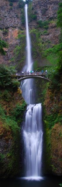 Multnomah Falls - USA by usaexplorer