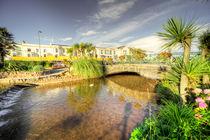 Dawlish Brook  von Rob Hawkins