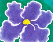 'African Violet Bloom #2' by Christine Cooper