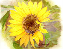 Bumble Bee on Sunflower by Linda Ginn