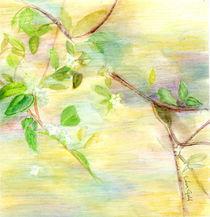 Floating Flowers von Linda Ginn