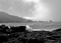 Point-lobos-number-4-031