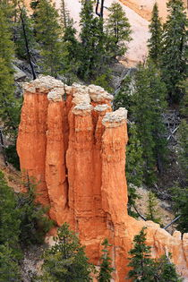 Bryce Canyon von fotoping