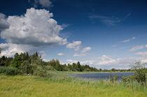 Sommer am See von lisa-glueck