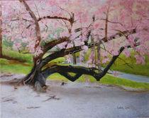 Cherry Tree by Linda Ginn