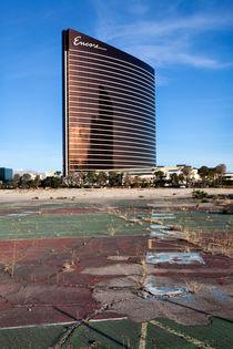 Wastland Las Vegas by morten larsen