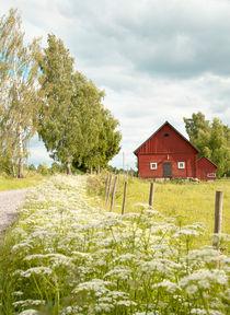 Swedish summer von Leopold Brix