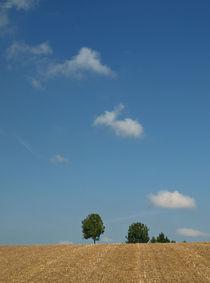 Wolkendiagonale by Brigitte Deus-Neumann