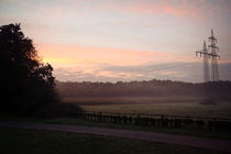 Morgennebel by sylbe