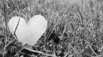 Heart of Ice by Vanessa B
