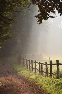 Spazierweg in Hebborn von © Ivonne Wentzler