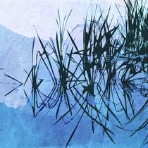2013-09-23-bolam-lake-016-2