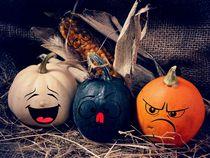 Funny Pumpkins by Stefanie Feldhaus
