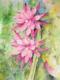 Kaktusblüte von Maria Földy