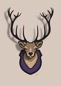 Maarten-rijnen-deerhead