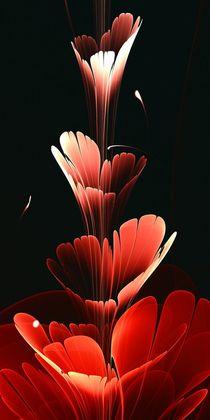 Bright-red-anastasiya-malakhova