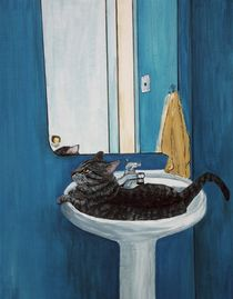 Cat in a Sink by Anastasiya Malakhova