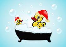 Christmas Ducks von Anastasiya Malakhova