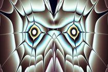 Day-owl-anastasiya-malakhova