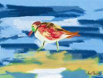bird in the sea. goash.  by Anat  Umansky