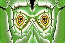 Green-owl-anastasiya-malakhova