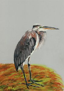 Heron-anastasiya-malakhova