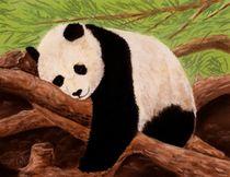 Panda-anastasiya-malakhova