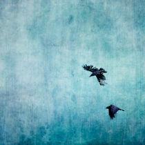 Ravens Flight von Priska  Wettstein