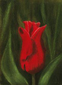 Red Elegance by Anastasiya Malakhova