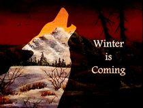 Winter is Coming by Anastasiya Malakhova