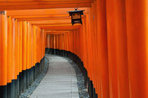 Fushimi Inari by holka