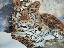 Leopard by Stephanie Zobrist