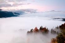 Sea of fog by Olha Rohulya