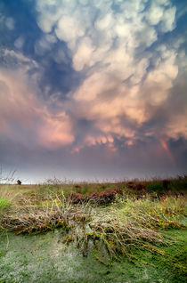 Mammatus clouds von Olha Rohulya