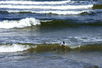 Wellenreiten by Bastian  Kienitz