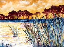 Coastal-pines-large