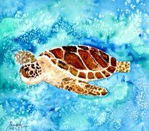 sea turtle by Derek McCrea