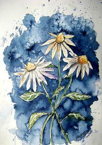 daisies von Derek McCrea