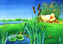 Illustration Duck Egg Nest by Denitza Gruber