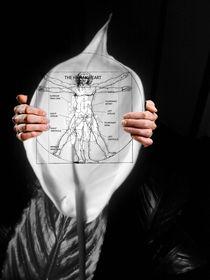 Peace Lily For The Body von Paulo Zerbato