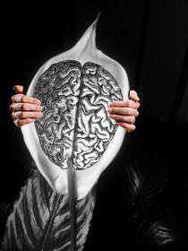 Peace Lily For The Mind von Paulo Zerbato