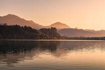 Bled 07 by Tom Uhlenberg