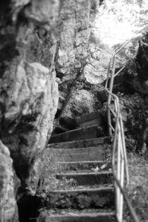 Treppe Tatzelwurm schwarz weiss Fotografie by Kathleen Schulze