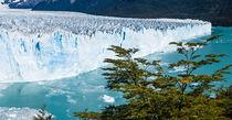 Moreno Glacier, Los Glaciares NP, Argentina von Tom Dempsey